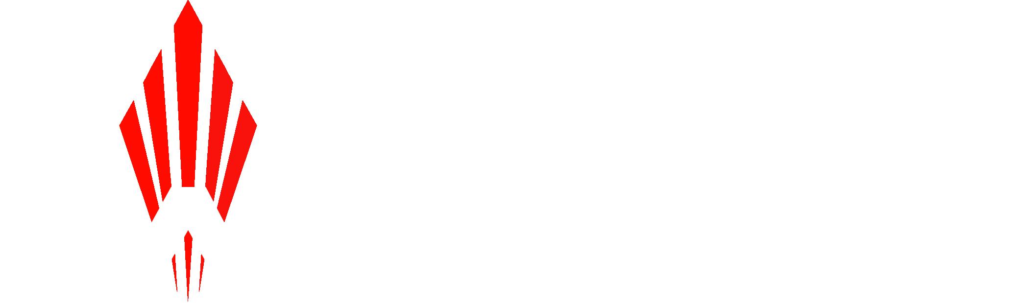 UZI Pro Pistol with Stabilizing Brace | IWI US, Inc